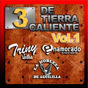3 De Tierra Caliente Vol.1 歌手頭像