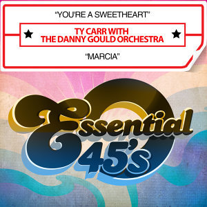 Ty Carr With The Danny Gould Orchestra 歌手頭像