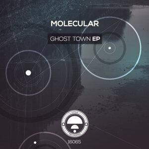 Molecular 歌手頭像