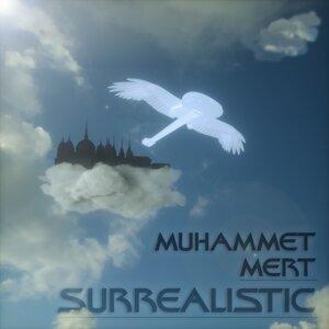 Muhammet Mert 歌手頭像