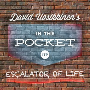 David Uosikkinen's in the Pocket 歌手頭像