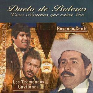 Rosendo Cantu 歌手頭像