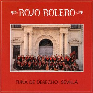 Tuna de Derecho de Sevilla 歌手頭像
