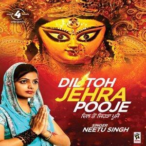 Neetu Singh 歌手頭像