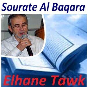 Elhane Tawk 歌手頭像