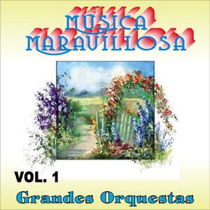 Música Maravillosa Vol. 1 歌手頭像