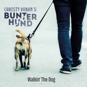 Christy Doran's Bunter Hund 歌手頭像