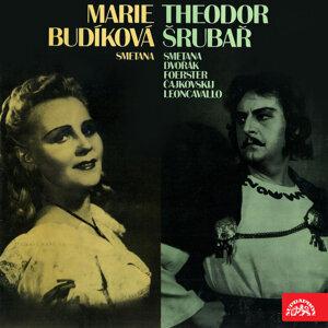 Marie Budíková - Jeremiášová 歌手頭像