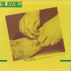 The Juveniles 歌手頭像