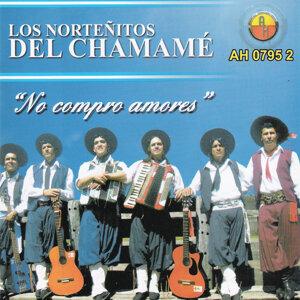 Los Norteñitos del Chamamé 歌手頭像