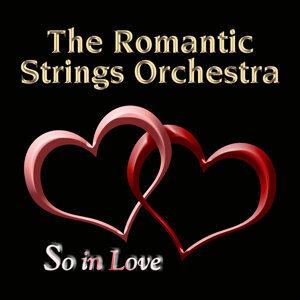 The Romantic Strings Orchestra 歌手頭像