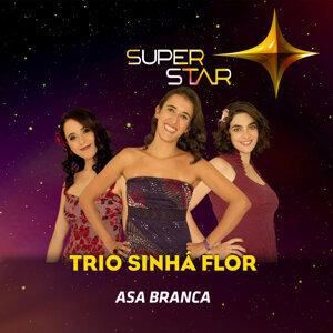 Trio Sinhá Flor