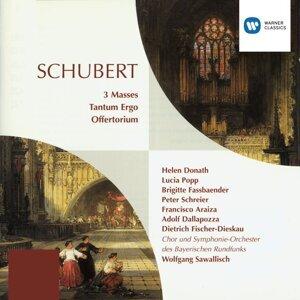 Wolfgang Sawallisch/Sinfonieorchester Des Bayerischen Rundfunks 歌手頭像