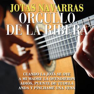 Aires de Tafalla 歌手頭像