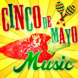 Fiesta Mexico Loco 歌手頭像