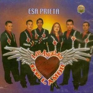 Los Angeles del Amor 歌手頭像
