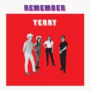 Terry 歌手頭像
