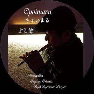 Cyoi Maru 歌手頭像