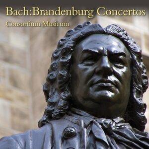 Consortium Musicum 歌手頭像