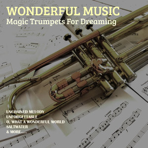 Wonderful Music 歌手頭像
