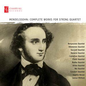 Navarra Quartet, Castilian Quartet, Piatti Quartet, Badke Quartet, Artea String Quartet, Wu Quartet, Cavaleri Quartet 歌手頭像
