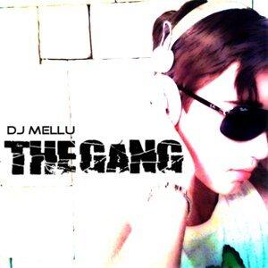 DJ Mellu 歌手頭像