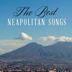 Roberto Murolo   Peppino di Capri 歌手頭像