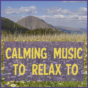 Zen Meditation, Deep Focus Music, & Relaxing Piano Music Consort 歌手頭像