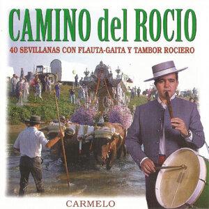 Carmelo 歌手頭像