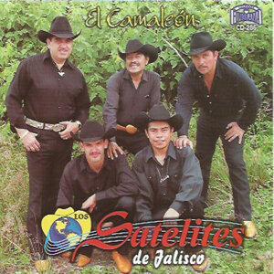 Los Satelites de Jalisco 歌手頭像