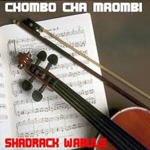 Shadrack Wabule 歌手頭像