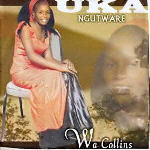 Wa Collins 歌手頭像