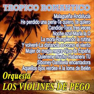 Orquesta Los Violines De Pego 歌手頭像