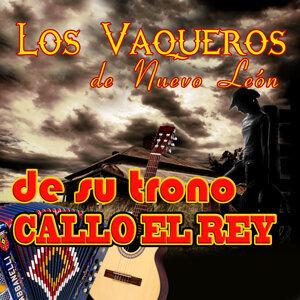 Los Vaqueros De Nuevo León 歌手頭像