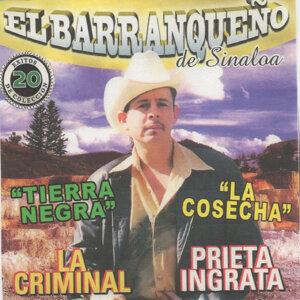 El Barranqueno de Sinaloa 歌手頭像