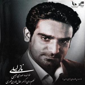 Mahdi Habibi 歌手頭像