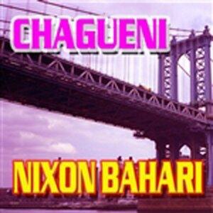 Nixon Bahari 歌手頭像