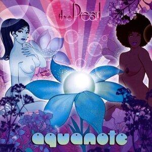 Aquanote 歌手頭像