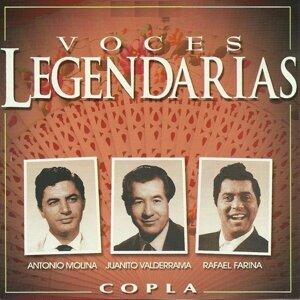 Antonio Molina, Juanito Valderrama, Rafael Farina 歌手頭像