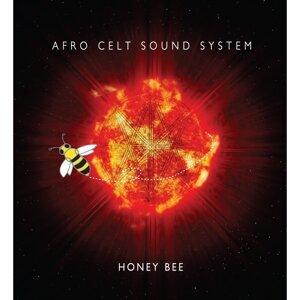 Afro Celt Sound System 歌手頭像