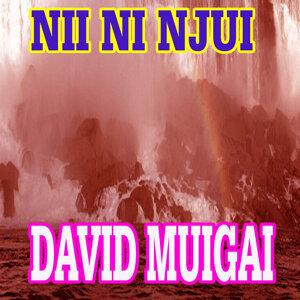 David Muigai 歌手頭像