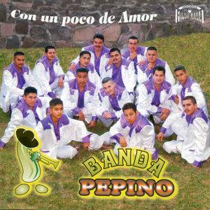 Banda Pepino 歌手頭像