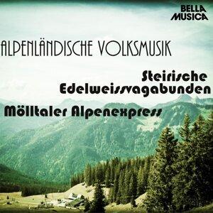 Steirische Edelweissvagabunden, Möllertaler Alpenexpress 歌手頭像