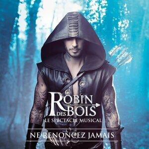 Robin des Bois 歌手頭像