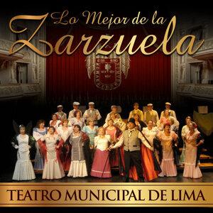 Orquesta Sinfónica Española & Coros de la Agrupación Lírica de Madrid 歌手頭像