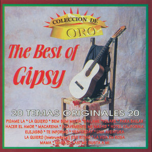 The Best Of Gipsy 歌手頭像