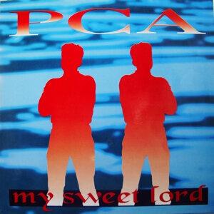 PCA 歌手頭像