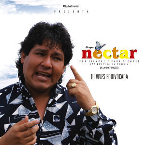 Grupo Nectar