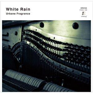 White Rain 歌手頭像