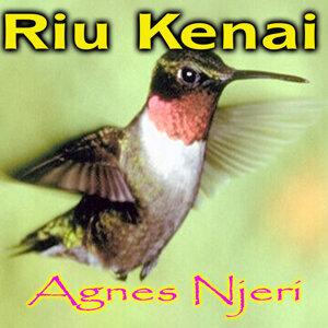 Agnes Njeri 歌手頭像